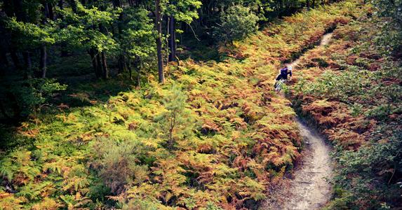 Dorking, Surrey Hills route - MBR