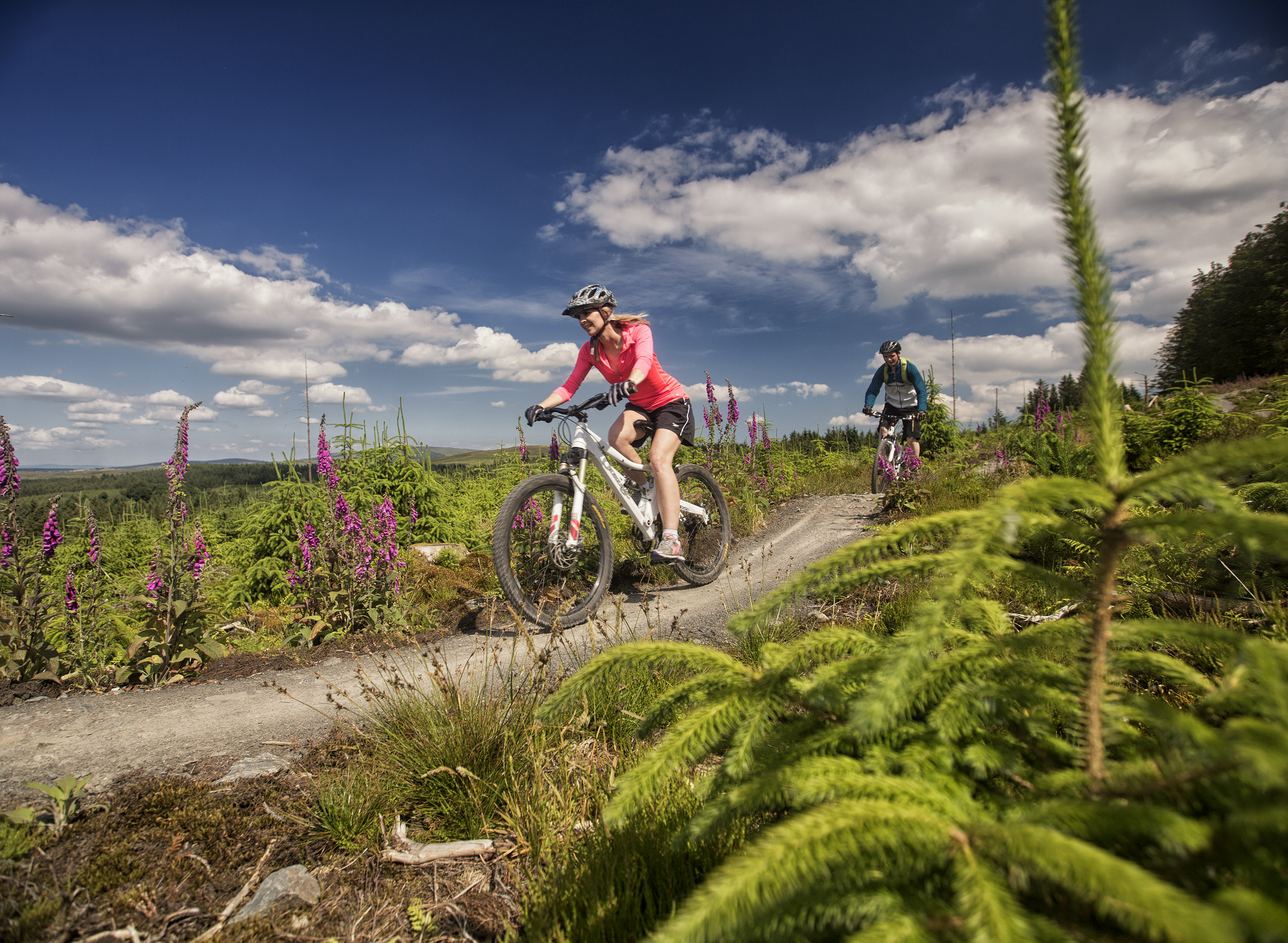 Eight new trail centres to open in northern ireland mbr for Key west bike trails