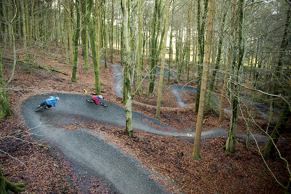 Best Cycle Routes For Kids In New Forest