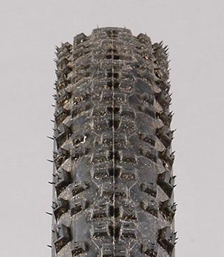 Schwalbe Racing Ralph Evo Snakeskin 29er MTB Tyre | Chain ...