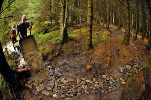 Make trails legal