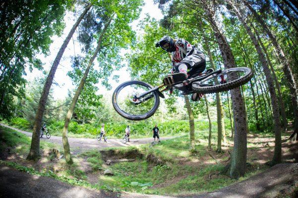 devinci bikes deutschland