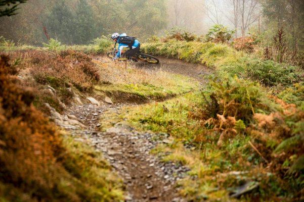 Mabie Forest, Scotland trail centre guide
