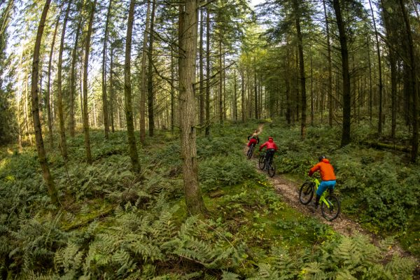 Wye Valley: some of the best trails this side of the Alps - MBR