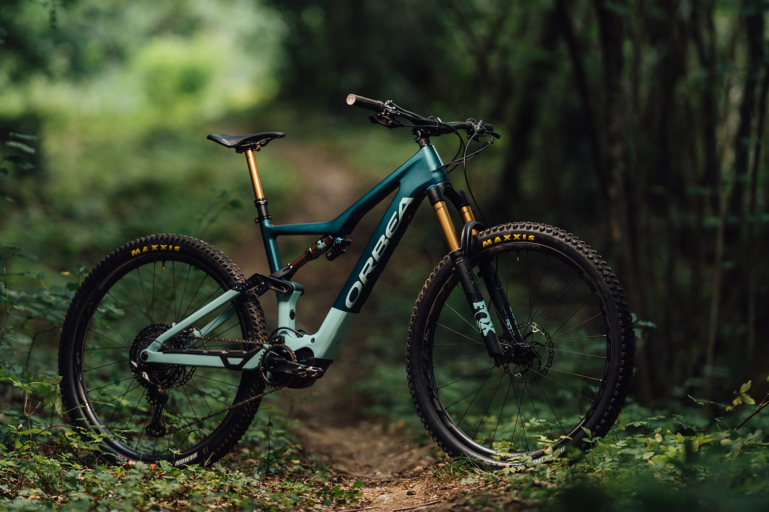 Orbea Rise(s) expectations with 16kg e-bike