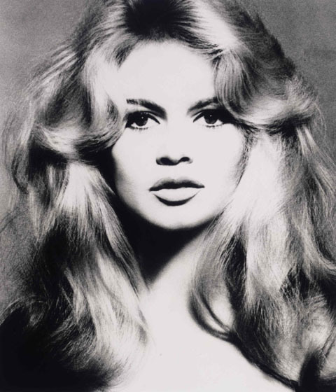 Brigitte bardot by Richard Avedon</em>  Picture credit: Christie's Images Ltd 2008