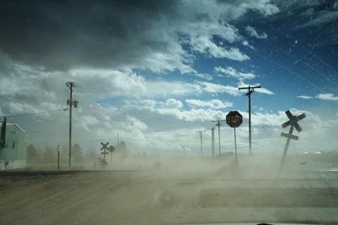 Dust Storm, Jack McGeown