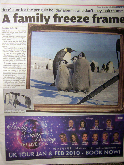 Penguins photo story