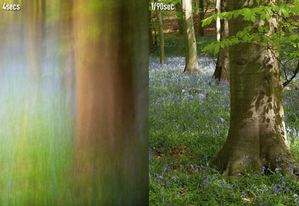 Exposure to create blur - woods at 4 sec and 1/90 sec