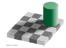 Apical - In this illustration, square A appears darker than square B, but in fact both squares are the same tone