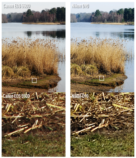 Canon EOS 550D VS Nikon D90. The difference in the level of detail isn