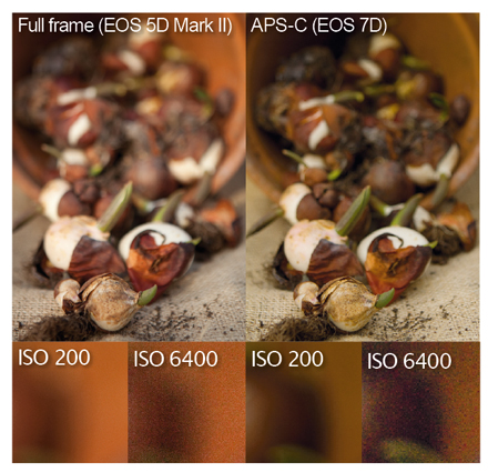 5d vs 7d sample images testing ISO. At ISO 6400 the EOS 7D raw image has slightly more chroma noise, but it is still impressive