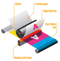 Dye sublimation printer diagram