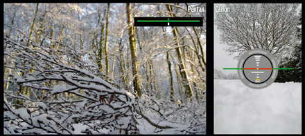 Canon raw vs Pentax electronic levels. When the cameras are held at an awkward angle, Pentax