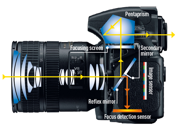 Focusing explained. The rays from the lens strike the reflex mirror and project upwards onto the focusing screen. This image is made upright and the right way round by the pentaprism, and viewed through the ocular lens. A part-reflective area of the reflex mirror allows a proportion of light to pass through to the secondary mirror, which reflects it down to the focus-detection sensors. The motor drives the lens to focus, the two mirrors swing up and the shutter is released, allowing all the light from the lens to reach the image plane.