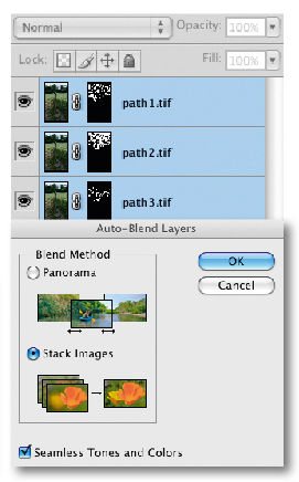 Using Photoshop CS4 to stack images - step 3. Now select Edit>Auto Blend Layers and select the Stacking option. Again the software will process the images for a few minutes. The end result is an image created from the selectively masked layers and which is optimised to reveal the focused areas of each shot.
