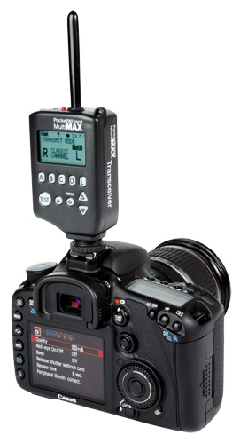 For wireless flash, neither the Canon EOS 1100D or the Nikon D3100 features a controller so a separate transmitter, such as the Pocket wizard is needed.