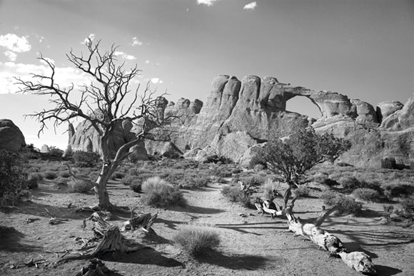Black And White Film Landscape Photography