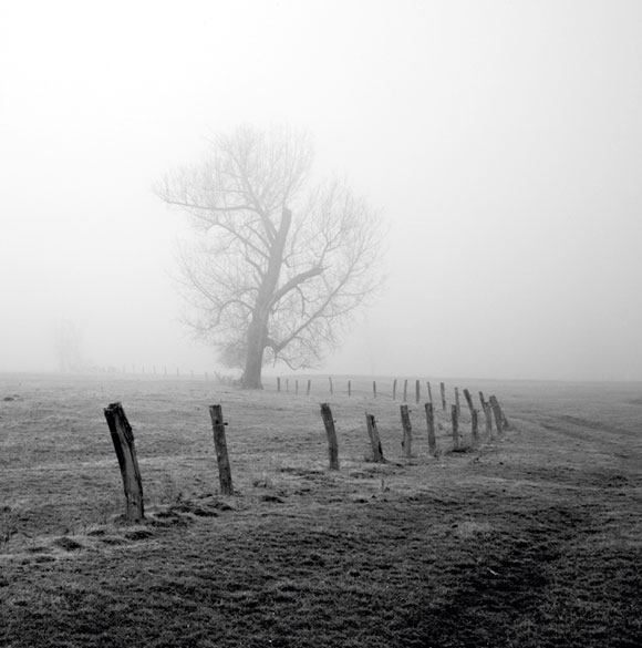 Black and white landscape photography composition