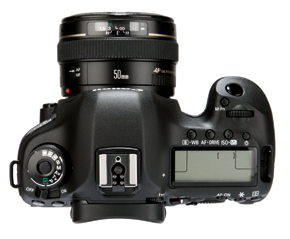 Canon 5D MKIII top