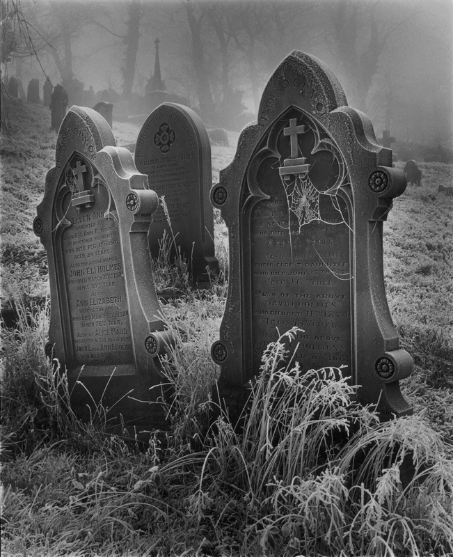 photo insight with andrew sanderson frosty graveyard