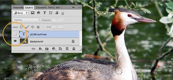 Watermarking image