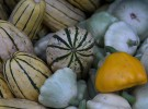 Nikon D750 sample image - melons