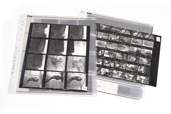 negatives-and-contact-sheet-no-bkgrnd