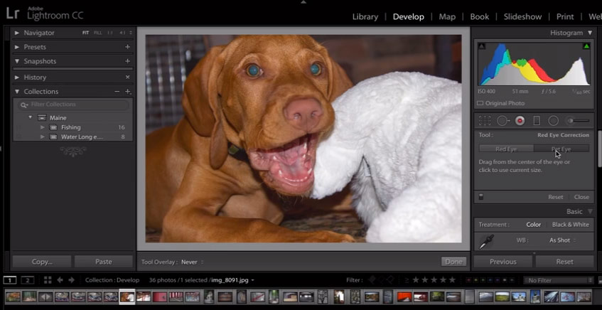 10 New Features of Lightroom 6 and CC - Amateur Photographer