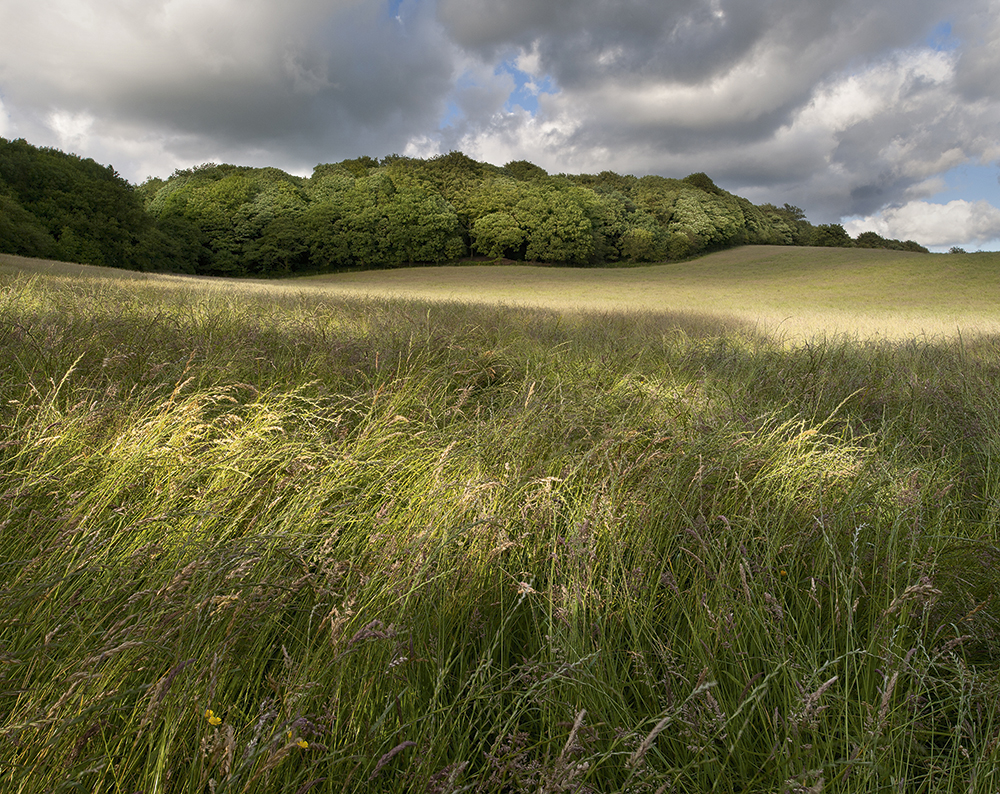 Landscape photography: Why I swapped medium format for a Nikon DSLR