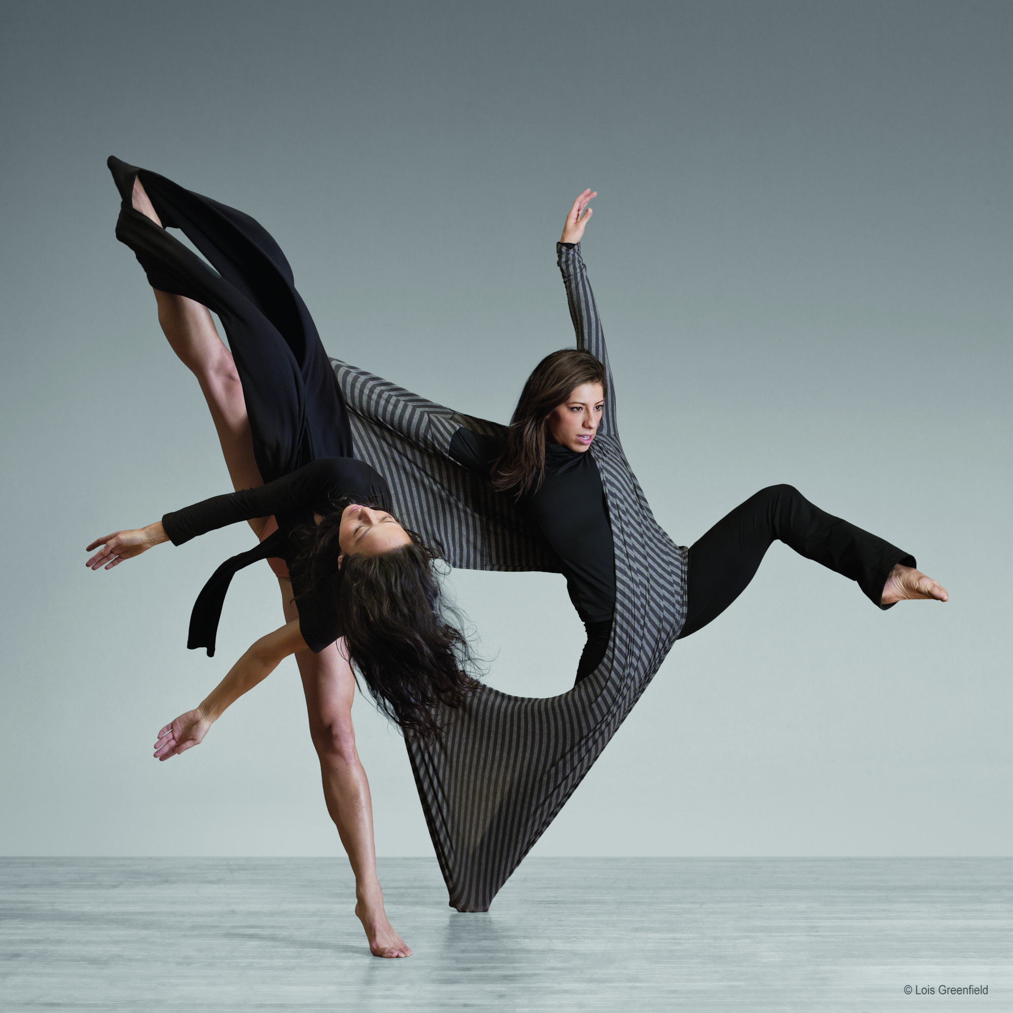 Moving Stills Interview With Lois Greenfield On Her