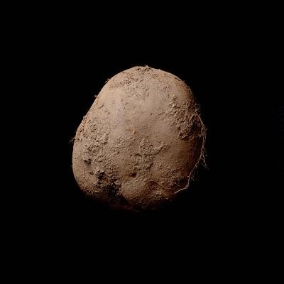 Potato #345 (2010) - Kevin Abosch