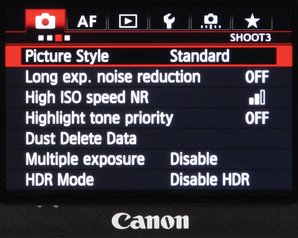 Master your camera: understanding picture styles on your
