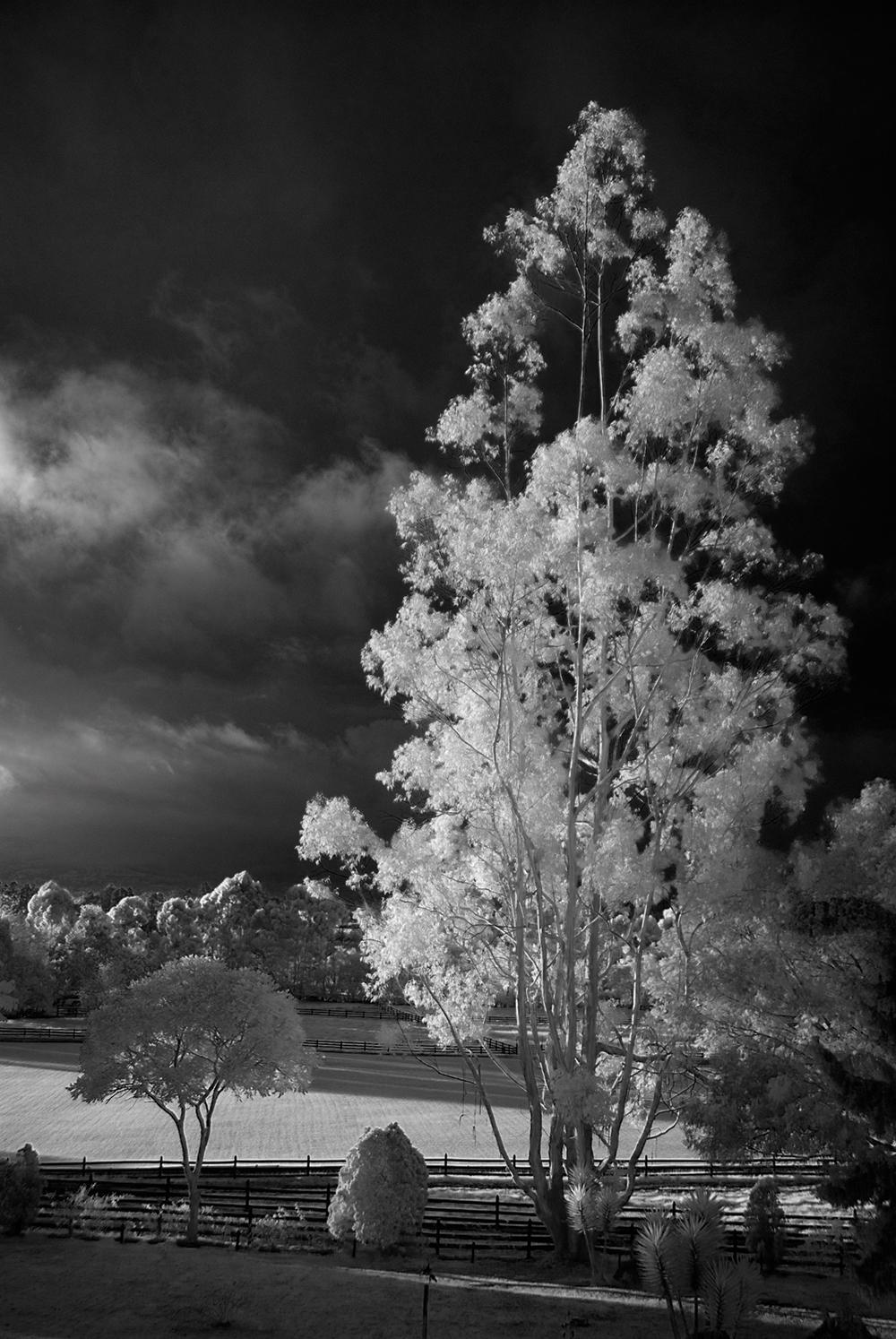 Spring light photography tips landscapes amateur photographer