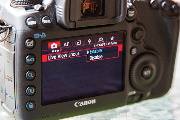 Using Live View on your Canon DSLR - Amateur Photographer