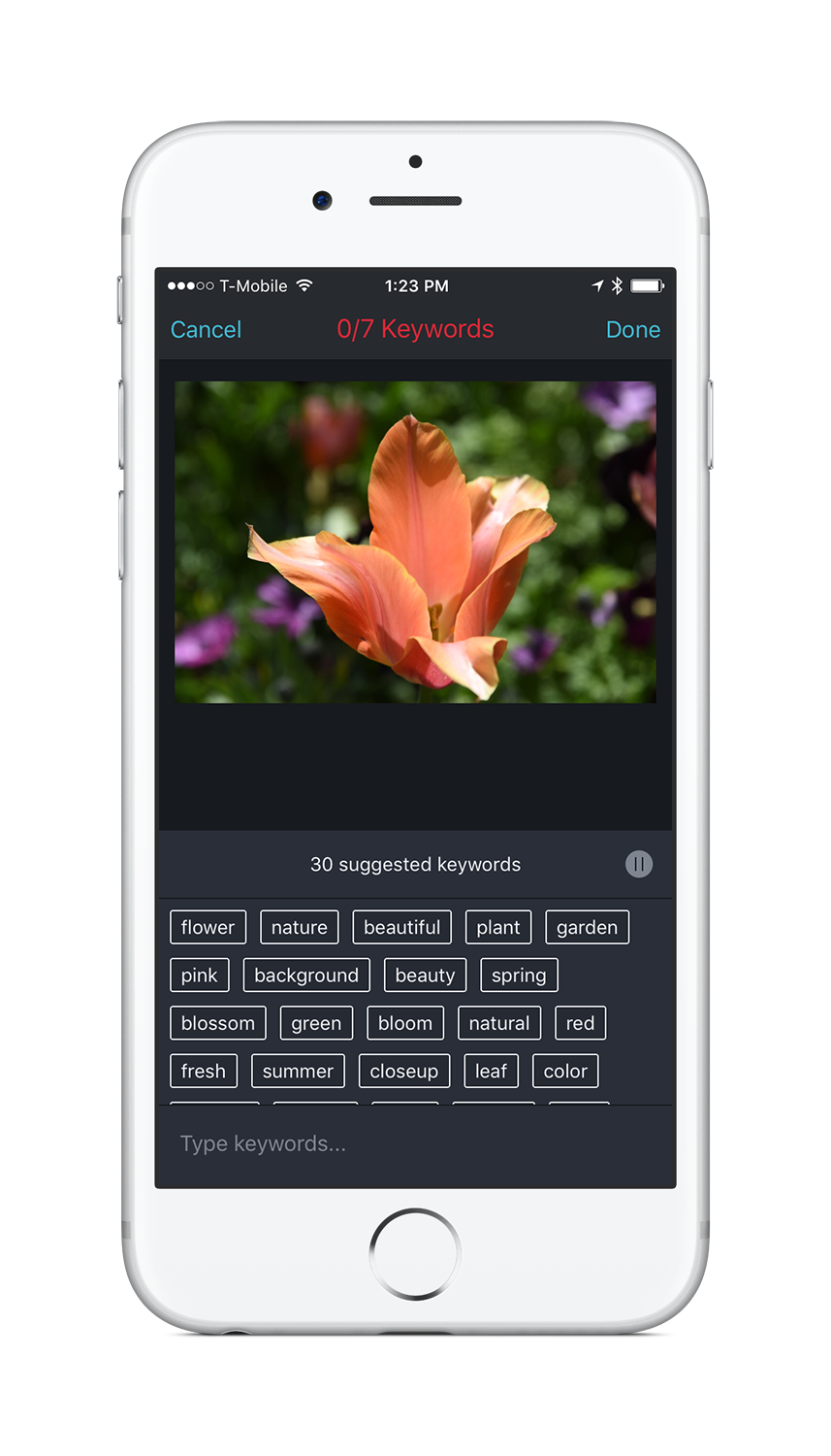 Shutterstock releases a keyword suggestion tool for iPhone