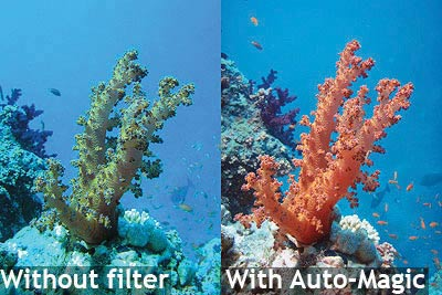Download An Essential Guide to Digital Underwater ...