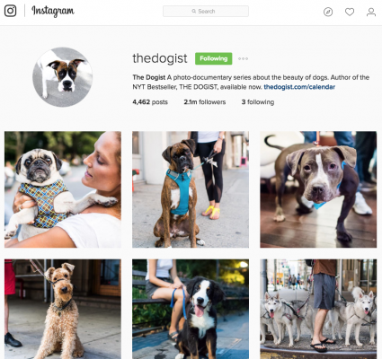 10 Photographers to watch on Instagram - Amateur Photographer