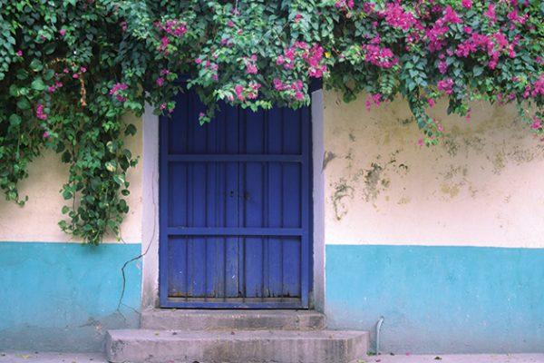 photographing doors