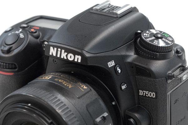 Nikon D7500 vs Nikon D500 - Amateur Photographer