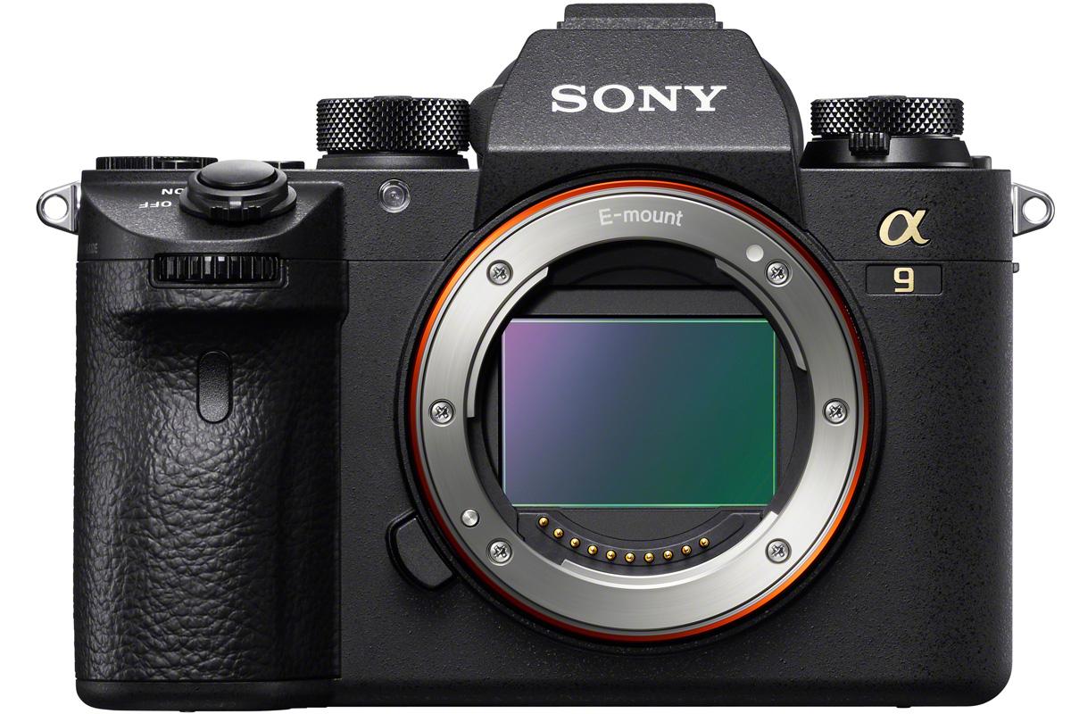 Sony Alpha (Amateur Photographer)