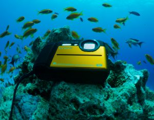 Panasonic launches Lumix FT7 – rugged compact with 31m waterproofing