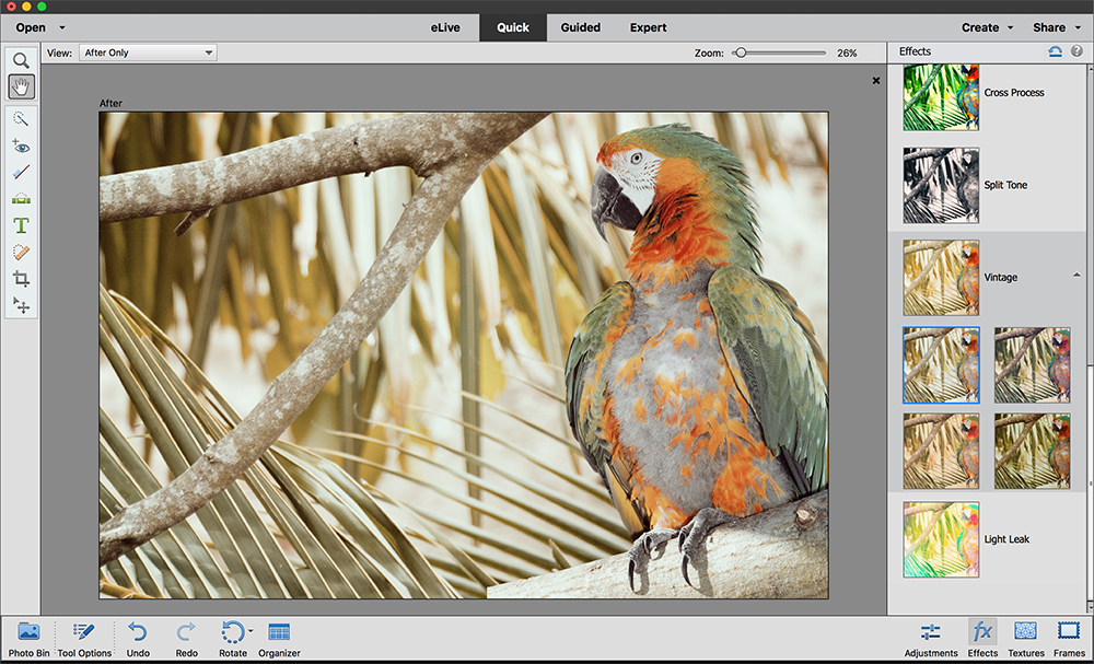 Master the essential tools in Photoshop Elements - Amateur
