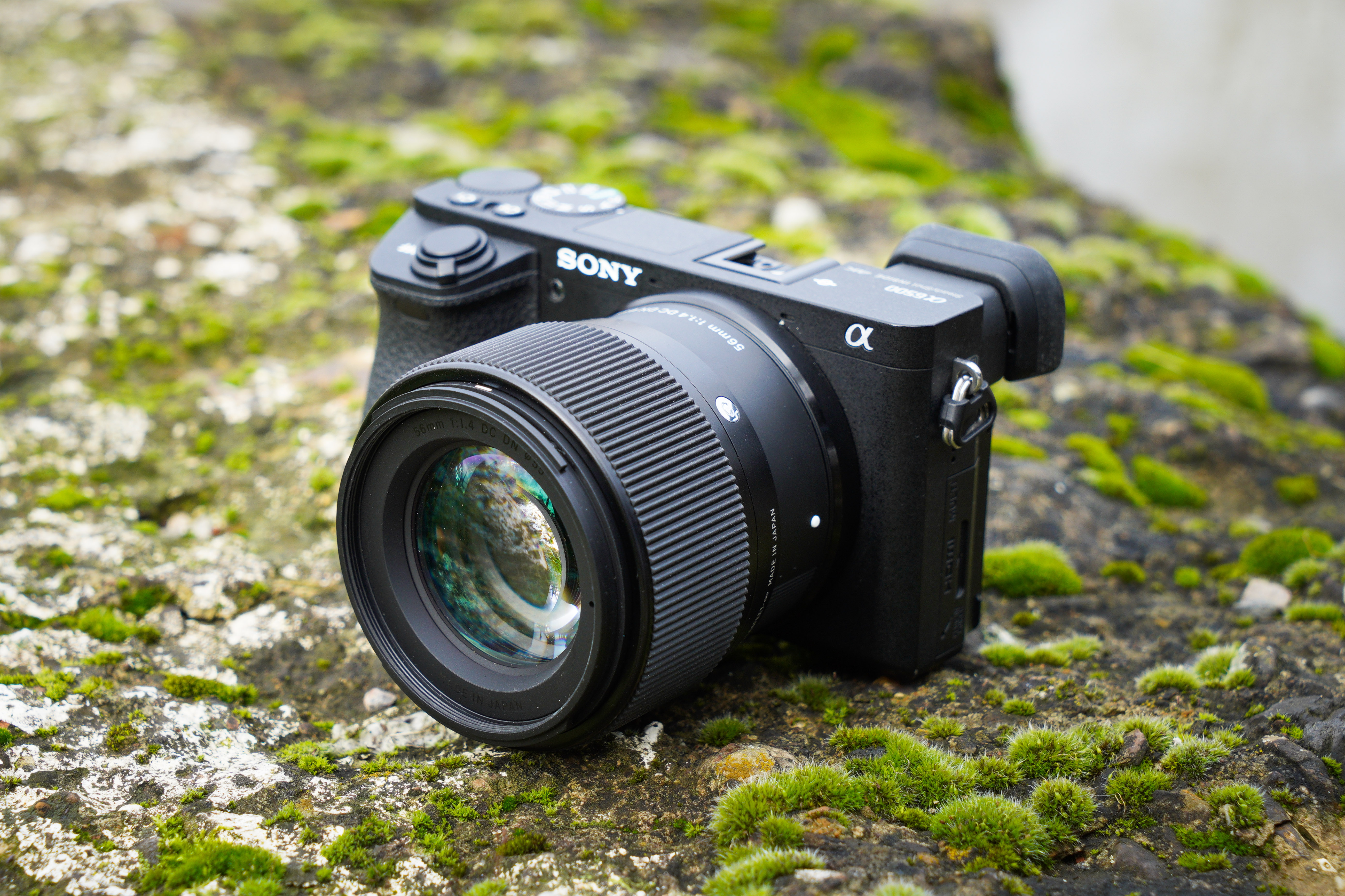 Sigma 56mm f/1 4 DC DN Contemporary review - Amateur Photographer