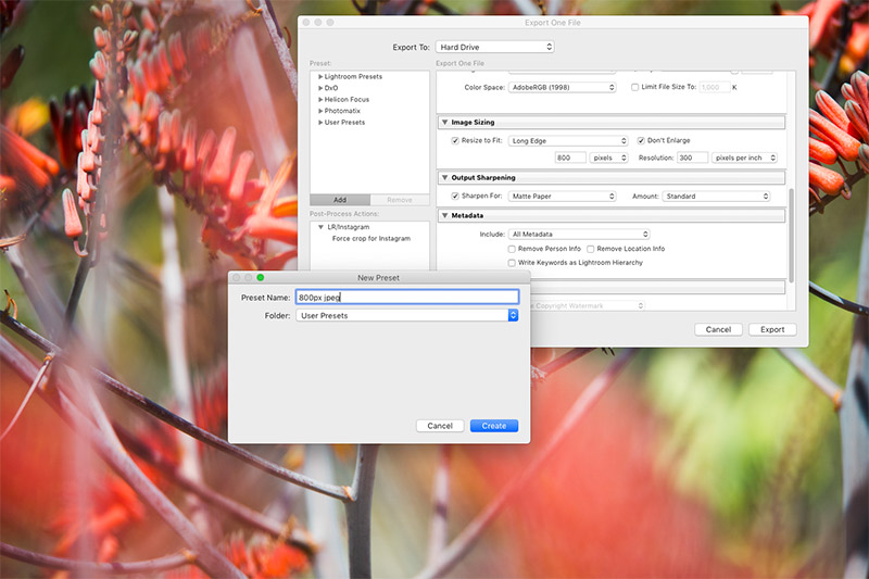 Work smarter and faster with Lightroom
