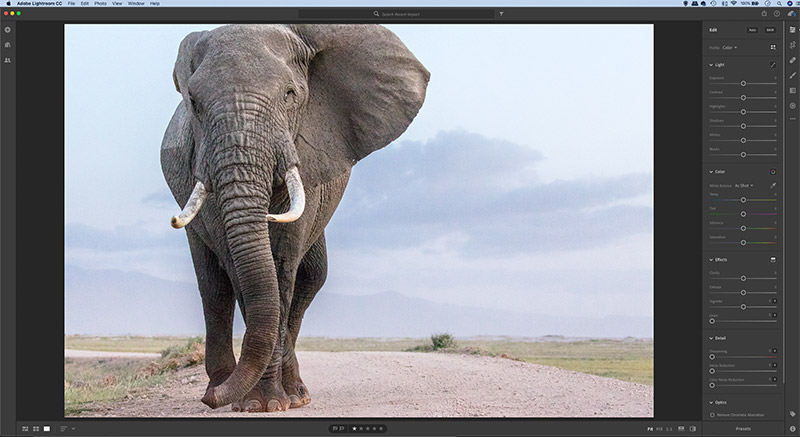 Work smarter and faster with Lightroom - Amateur Photographer