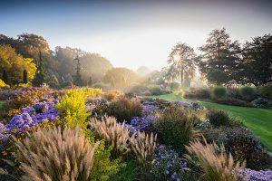 IGPOTY gardens
