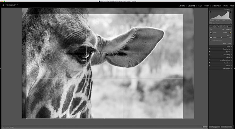 Get the most from the crop tool in Lightroom