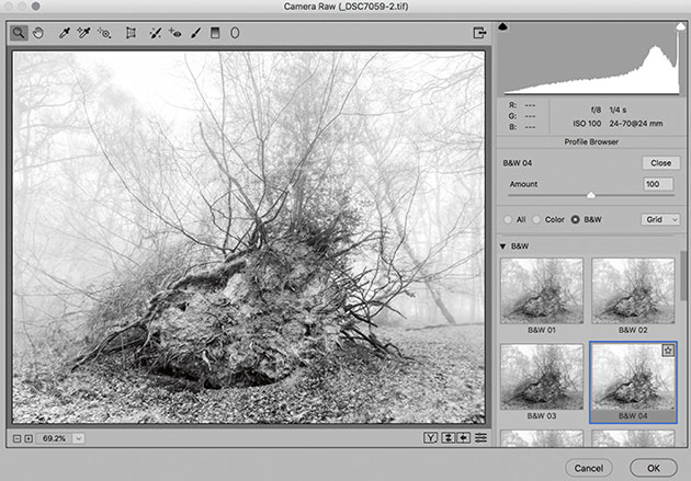 How to use Camera Raw as a Photoshop filter - Amateur