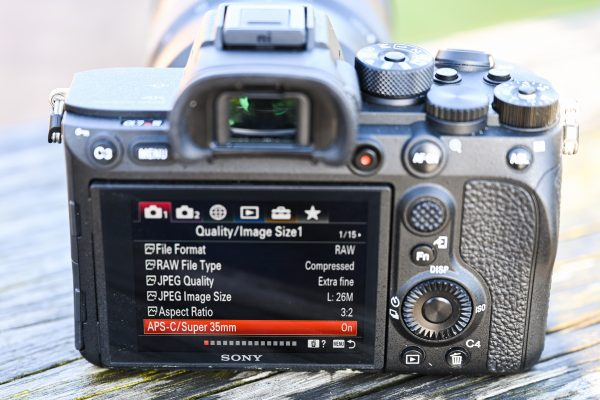 Sony Alpha 7R IV review - Page 2 of 9 - Amateur Photographer